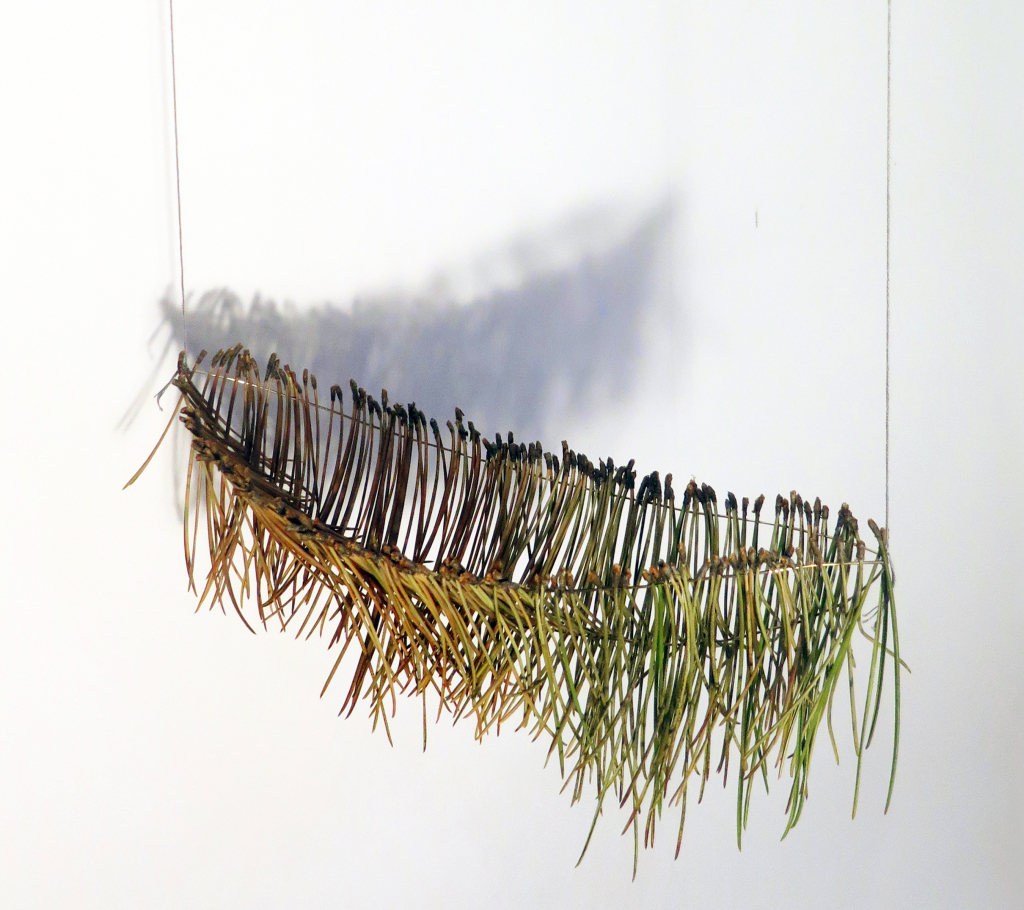 Other Ways to Find Home No.1   Silver wire, twin pine needles